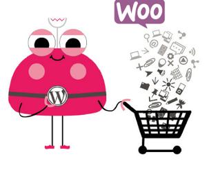 kurs-online-sklep-na-wordpressie-woocommerce300